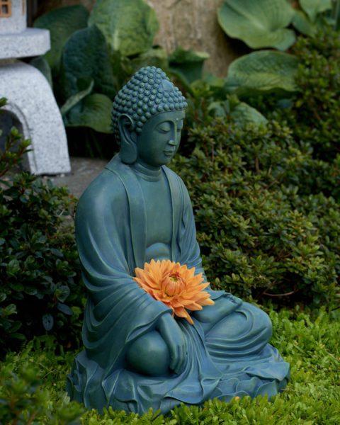 Have Buddha
