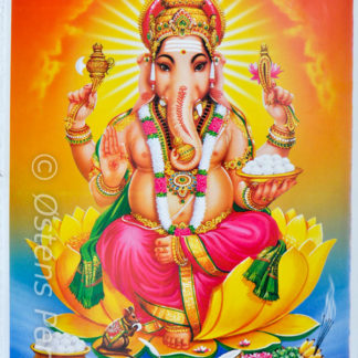 Ganesh plakater