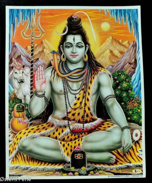 Shiva plakater med glimmer