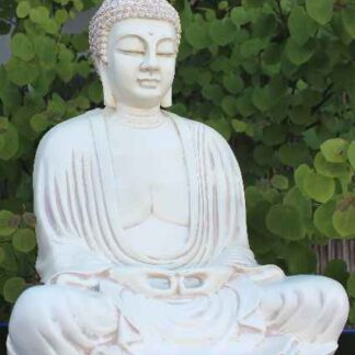 Have Buddha 40 cm.